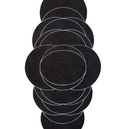 Gran Danaide negra. 100 x 50 cm. 2011